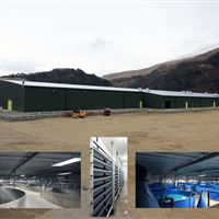 Lochailort Recirculation Hatchery opened in June 2013. It has the capacity to produce 5 million smolts and 6 million fry and parr