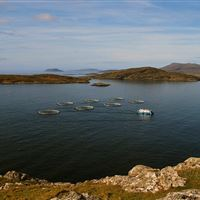 Hellisay salmon farm, Isle of Barra